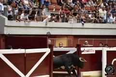 recortadores Logroño (38)