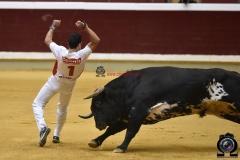 recortadores Logroño (41)