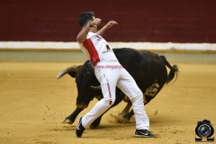 recortadores Logroño (46)