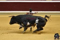recortadores Logroño (51)