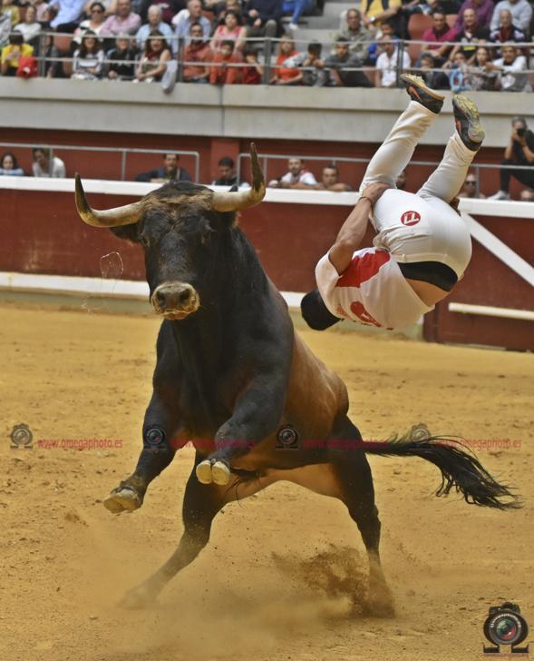 Logroño 22-9-2019