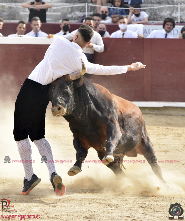 Concurso Estella 29-5-2021